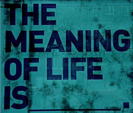 Image result for life of meaning