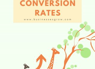 conversion rate giraffes