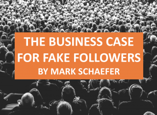 The Business Case for Fake Followers